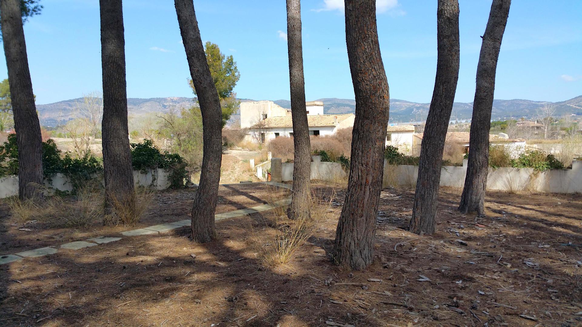 """Vista de una de las edificaciones desde la pinada de """"El Choclo"""" en Castalla"""